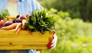 Niedroga ekologiczna żywność? To możliwe!