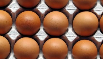 eggs-1938189_1920