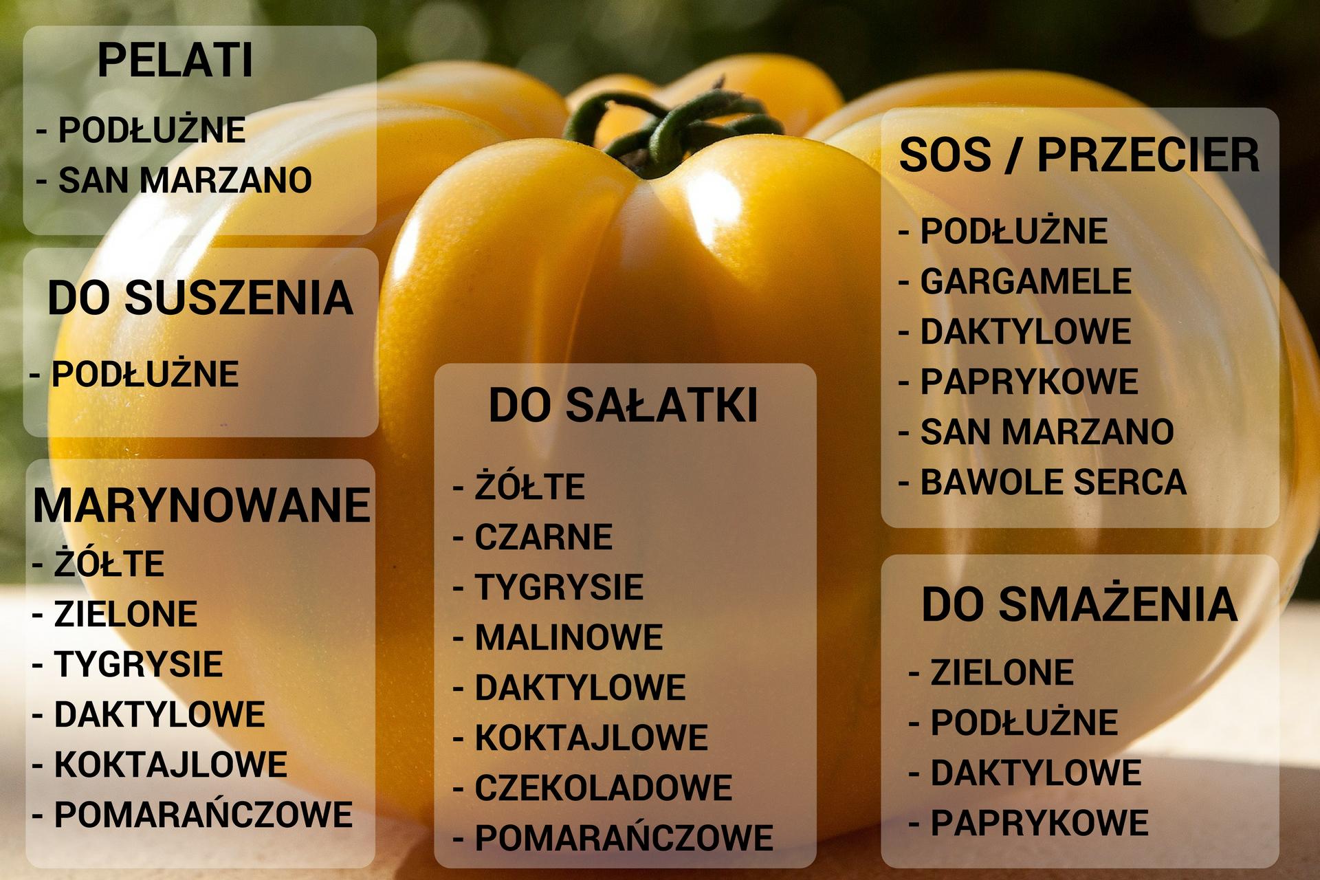 Zastosowanie pomidorów w kuchni