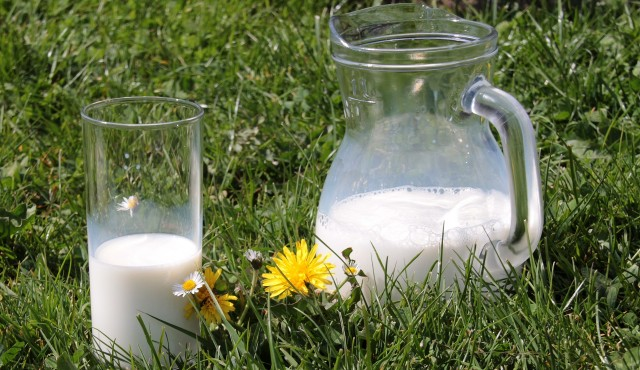 mleko kozie