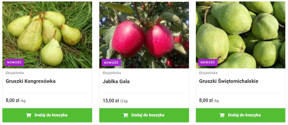 ekojablonka_oferta