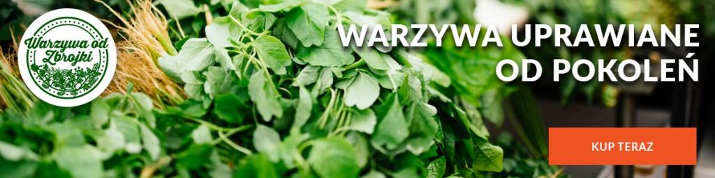 Warzywa od Zbrojki - oferta