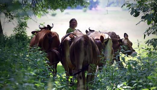 nasarzewscy gospodarstwo rolne