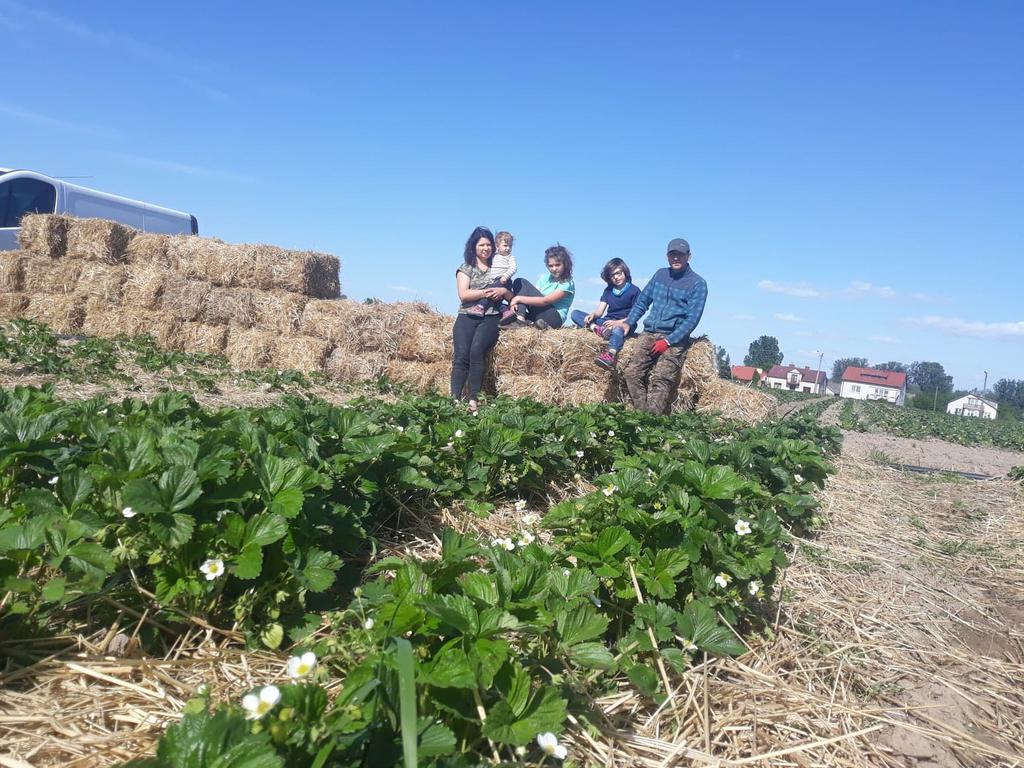 Producent EKO SADOWSCY Gospodarstwo Ekologiczne - zdrowa żywność blisko Ciebie