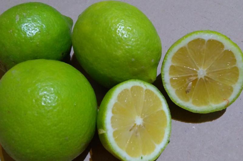 Produkt Cytryny Verdello (EKO) - zdrowa żywność blisko Ciebie