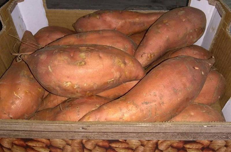 Produkt Bataty (EKO) - zdrowa żywność blisko Ciebie
