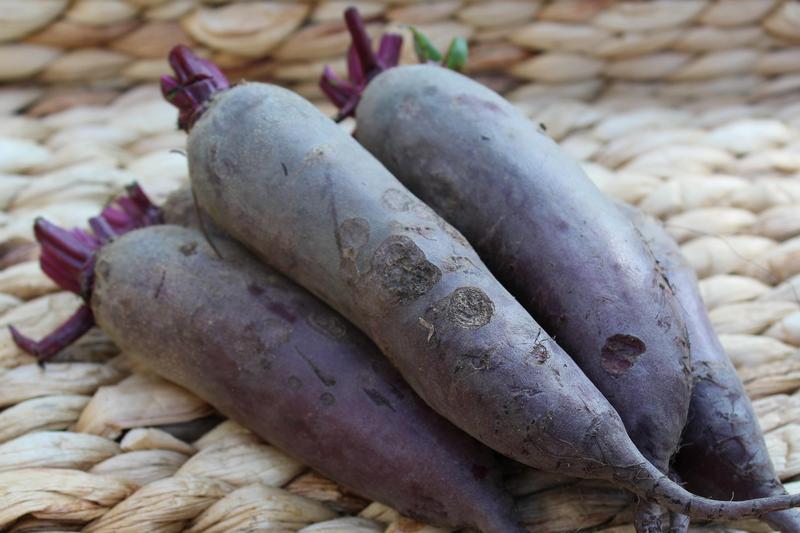 Produkt Buraki długie (EKO) - zdrowa żywność blisko Ciebie