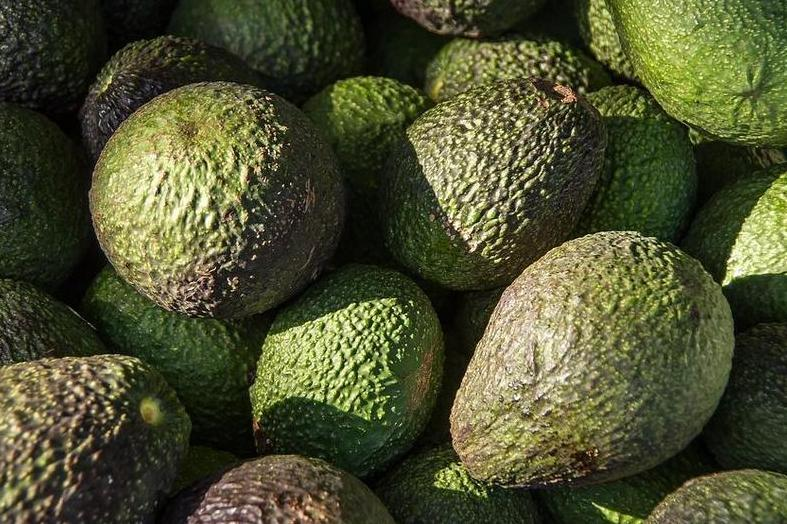 Produkt Awokado Hass (EKO) - zdrowa żywność blisko Ciebie