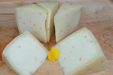 Produkt Gouda owcza z kozieradką - zdrowa żywność blisko Ciebie