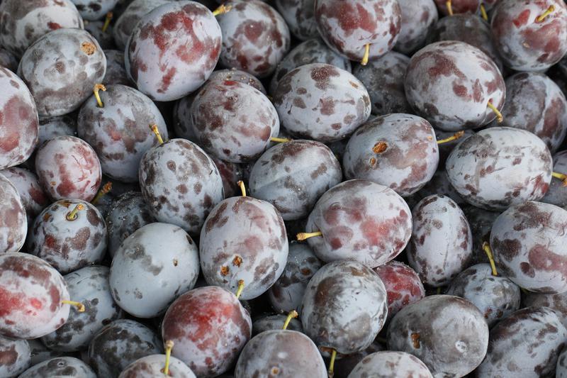Produkt Śliwki węgierki (EKO) - zdrowa żywność blisko Ciebie
