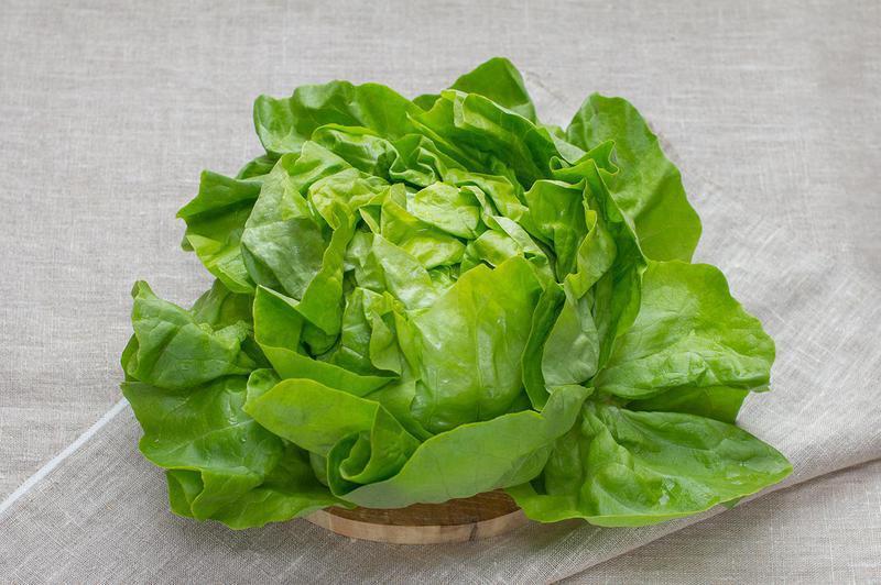 Produkt Sałata masłowa (EKO) - zdrowa żywność blisko Ciebie