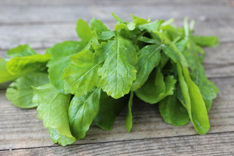 Produkt Rukola (EKO) - zdrowa żywność blisko Ciebie