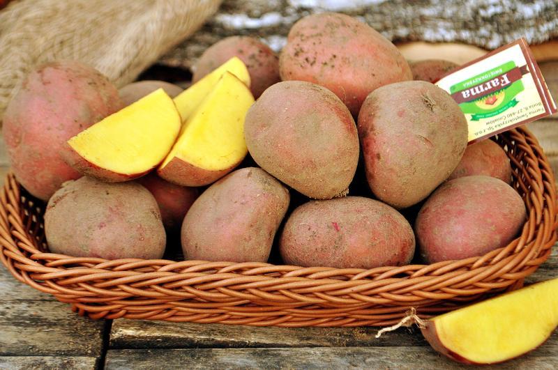 Produkt Ziemniaki czerwone (EKO) - zdrowa żywność blisko Ciebie