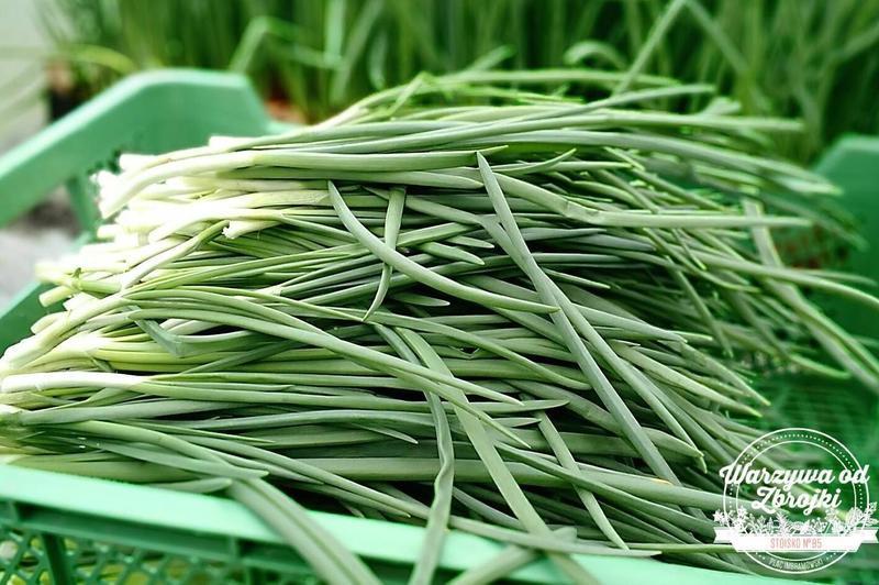 Produkt Zielona cebulka - zdrowa żywność blisko Ciebie