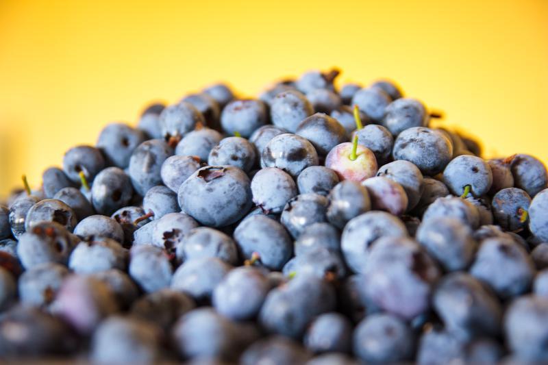 Produkt Borówka amerykańska odmiana Nelson - zdrowa żywność blisko Ciebie