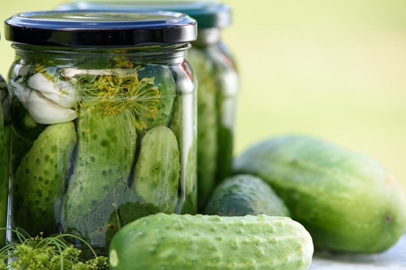 Produkt Ogórki małosolne (EKO) - zdrowa żywność blisko Ciebie