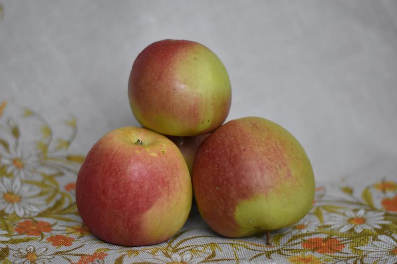 Produkt Jabłka Ligol - zdrowa żywność blisko Ciebie