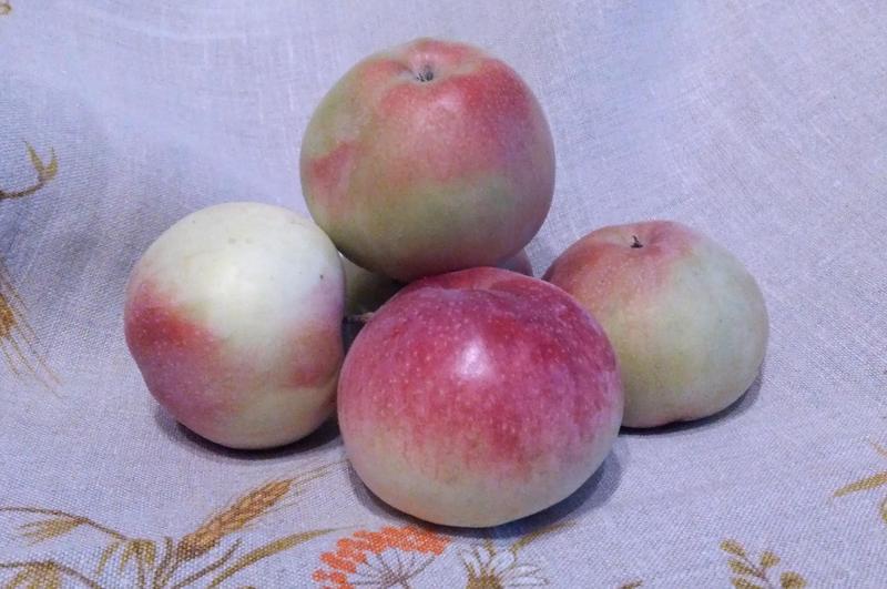 Produkt Jabłka Lobo - zdrowa żywność blisko Ciebie