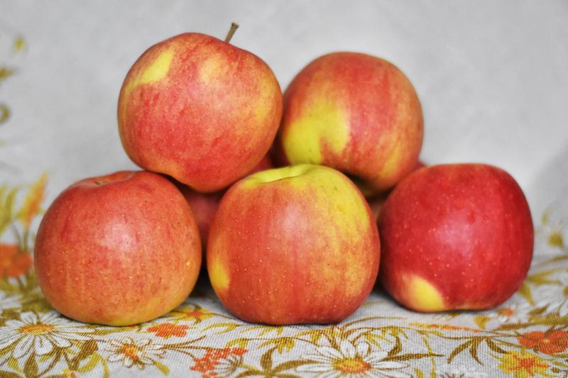 Produkt Jabłka Szampion - zdrowa żywność blisko Ciebie