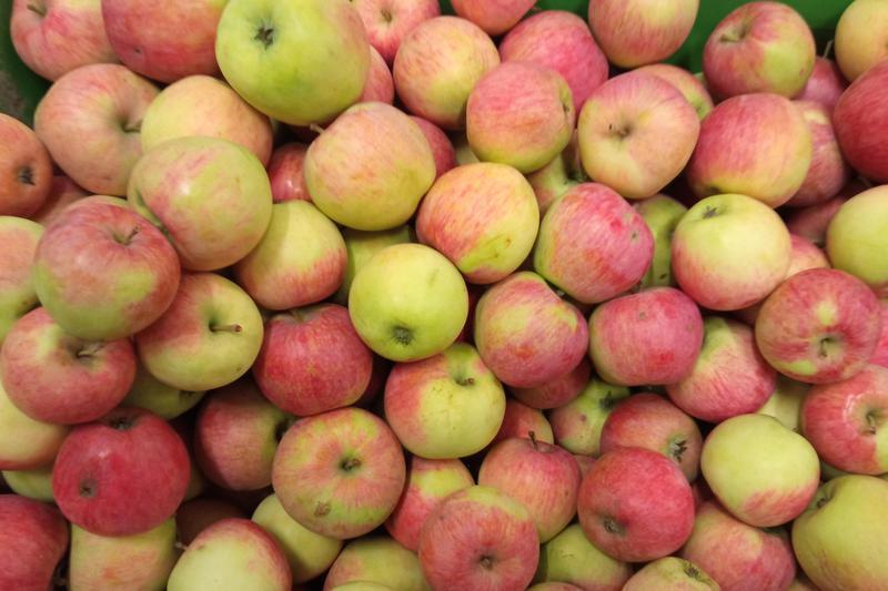 Produkt Jabłka Piros EKO - zdrowa żywność blisko Ciebie