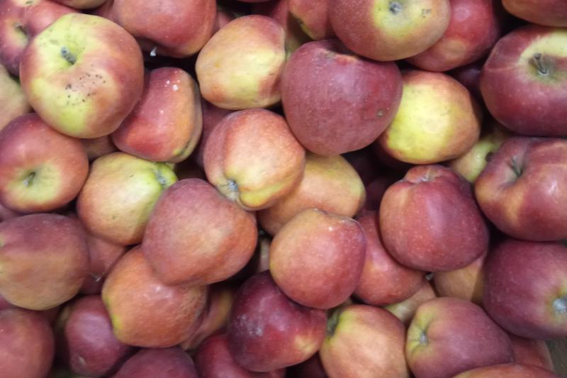Produkt Jabłka Gloster EKO - zdrowa żywność blisko Ciebie
