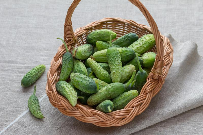 Produkt 0górki (do kiszenia) (EKO) - zdrowa żywność blisko Ciebie