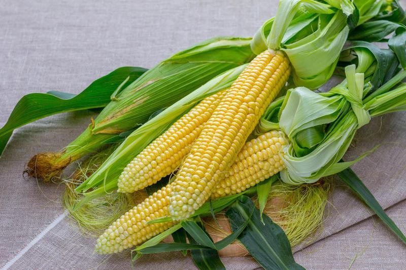 Produkt Kukurydza cukrowa (EKO) - zdrowa żywność blisko Ciebie