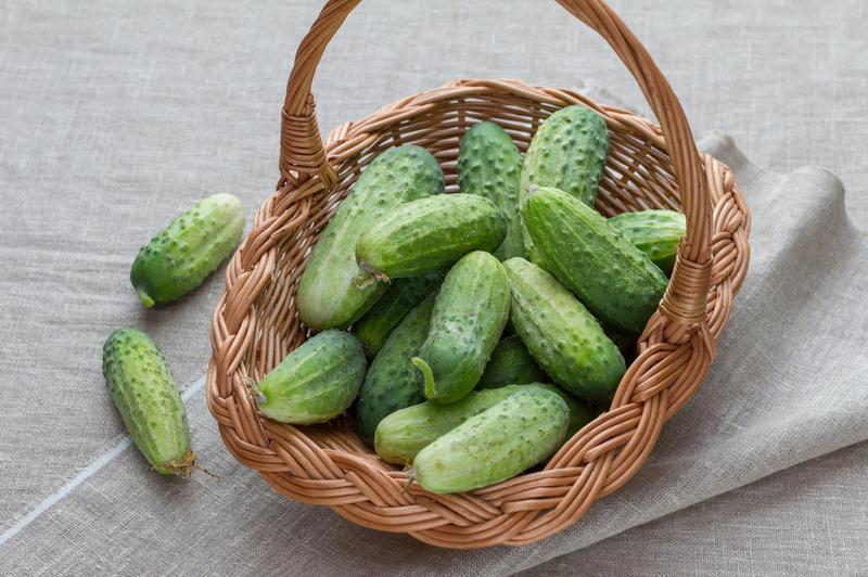 Produkt Ogórki polne sałatkowe (EKO) - zdrowa żywność blisko Ciebie