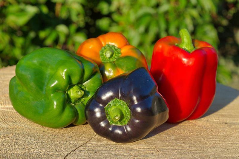 Produkt Papryka mix 4 (EKO) - zdrowa żywność blisko Ciebie