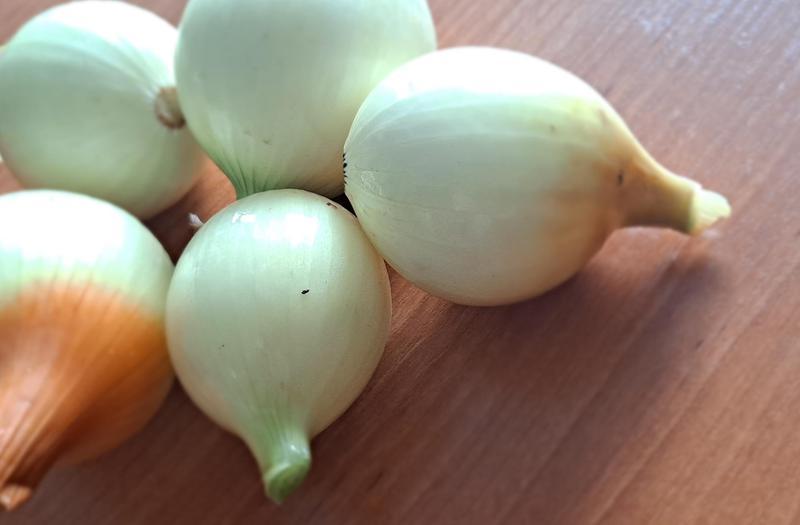 Produkt Cebula Biała młoda - zdrowa żywność blisko Ciebie