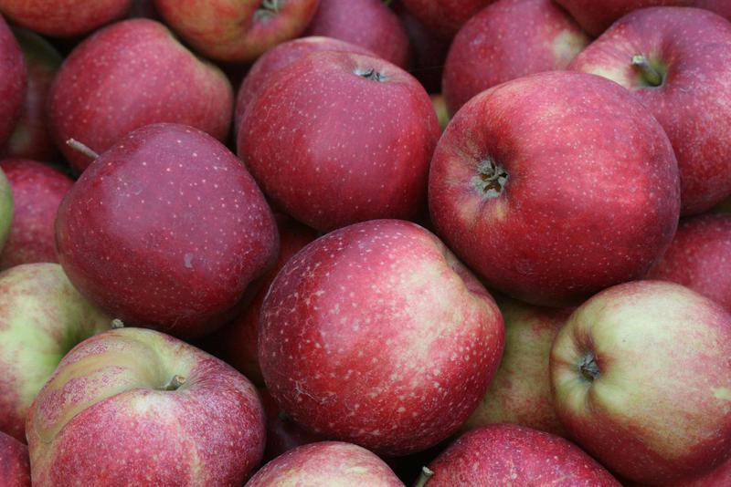 Produkt Jabłka odmiana jonagold - zdrowa żywność blisko Ciebie