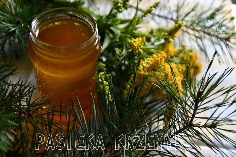 Produkt Ziołomiód sosnowy - zdrowa żywność blisko Ciebie